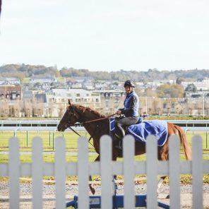 Deauville-horse-rider